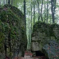 Sanspareil - ein Landschaftsgarten im Wald