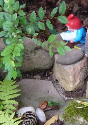 Lesender Gartenzwerg