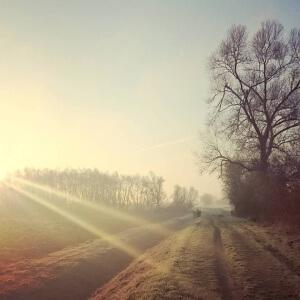 Mantra für 2016: ruhig weitergehen