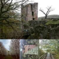 Fotos von den Wanderungen in Franken