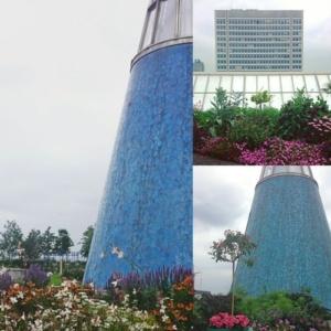 Parkomanie - Dachgarten auf der Bundeskunsthalle Bonn