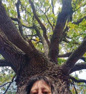 Waldbaden kreativ: der Versuch, ein Selfie mit einer Eiche zu machen. Die Eiche war zu groß für das Bild, daher bin ich nur vom Scheitel bis zur Nasenspitze zu sehen.