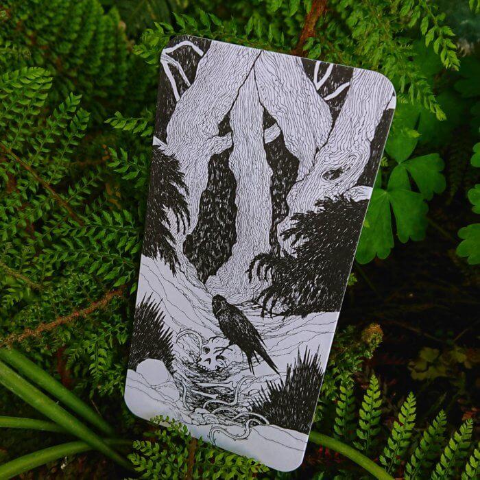 Gruselgeschichte mit Bildkarten erzählen: der magische Wald. Durchquere eine verzauberte Landschaft, die von feuerspeienden Drachen, magischen Einhörnern und finsteren Gestalten bewohnt wird, und lass deiner Fantasie freien Lauf!