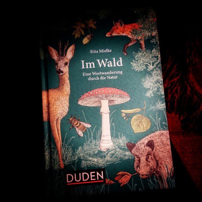 Im Wald. Wortwanderungen. SAchbuch. Wörter, die mit dem deutschen Wald eng verbunden sind, stellt dieser liebevoll gestaltete Band in den Mittelpunkt.