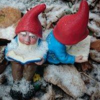 Kinderbuch- und Bilderbuch-Tipps vom Buchkind Blog. Bild: Lesende Gartenzwerge im Schnee