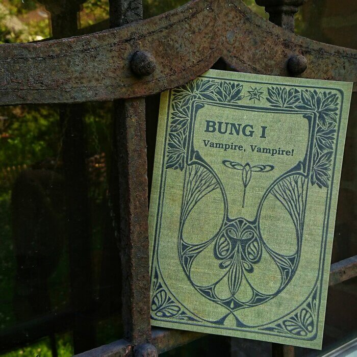 BUNG - Vampire, Vampire! Cover des Jugendbuchs vor rostigem Gitter eines Kellerfensters