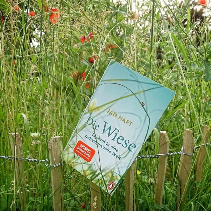 """Buch von Jan Haft: """"Die Wiese"""" fotografiert in einer Wiese mit verblühten Mohnblumen"""