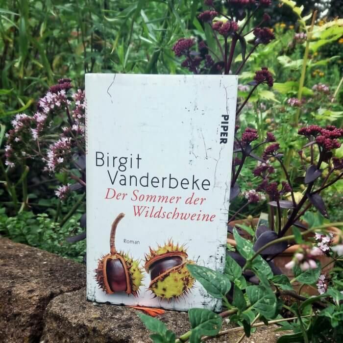 Birgit Vanderbeke - Sommer der Wildschweine. Roman.
